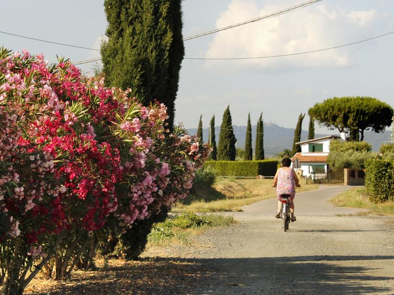 4-castiglione-agriturismo-paradiso